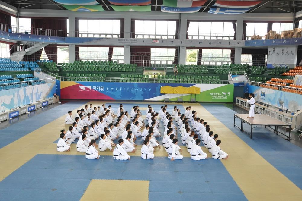 Kukkiwon 3 | Cali Kicks Martial Arts Academy | Taekwondo in Santa Rosa